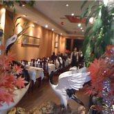 Restaurante Chino Tai Wan 7 RESTAURANTES