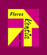 KENTIA FLORES