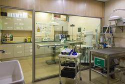Clínica Veterinaria San Francisco Castellón de la Plana/Castelló de la Plana