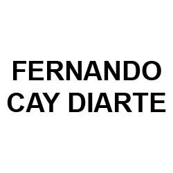 Fernando Cay Diarte