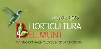 Horticultura Bellmunt S.L.
