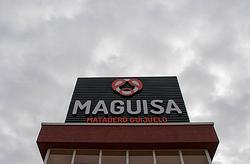 Imagen de Maguisa