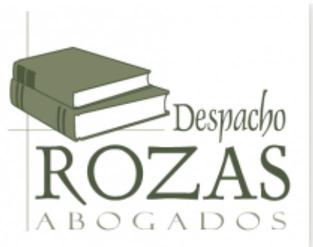 Rozas Bravo, Juan Manuel