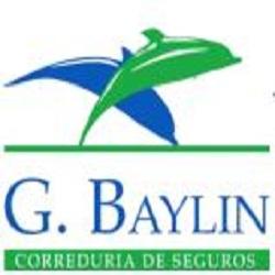G. Baylin Correduría de Seguros Grupo Lacao Investment Inc S.L.