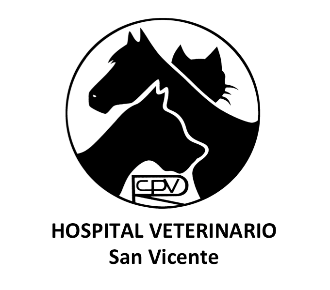 Hospital Veterinario San Vicente