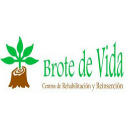 Asociación Brote De Vida