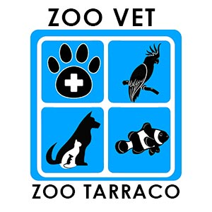 Zoo Vet 6 Zoo Tarraco