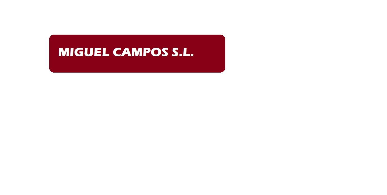 Miguel Campos S.l.