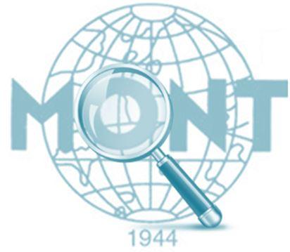 Mont Detectives
