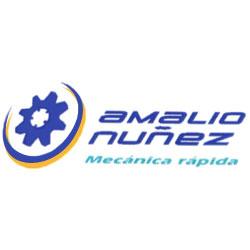 Neumáticos Amalio Núñez