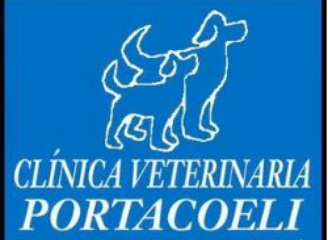 CLINICA VETERINARIA PORTACOELI (NERVIÓN-SEVILLA)
