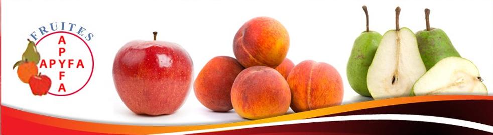 Fruites Apyfa