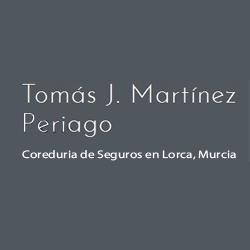 Tomás J. Martínez Periago