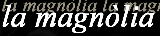 La Magnolia Floristes