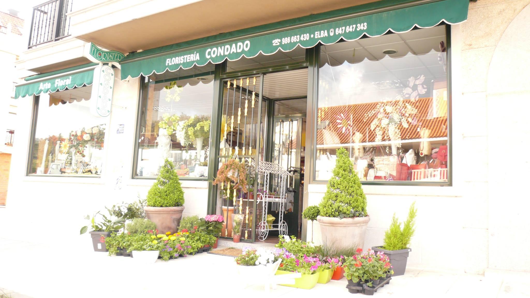 Floristería Y Detalles Condado