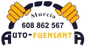 Alquiler de coches con conductor Auto Fuensanta S L