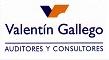 Valentín Gallego Auditores y Consultores