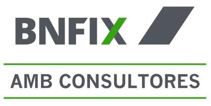 Bnfix Amb Consultores