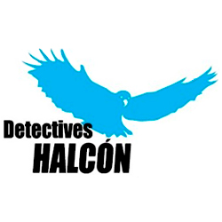 Detectives Halcón