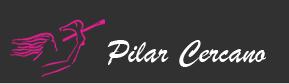 Centro De Formación De Peluquería Y Estética Pilar Cercano S.A.