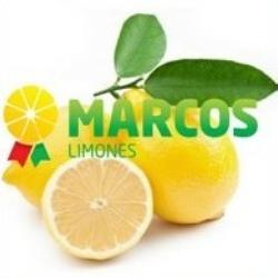 Comercial Cítricos Marcos