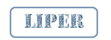 Liper - Academia de Corte y Confección