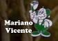 Mariano Vicente
