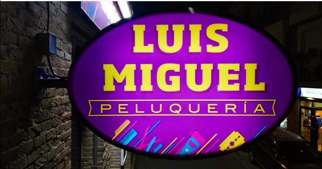 LUIS MIGUEL CALVO ROPERO