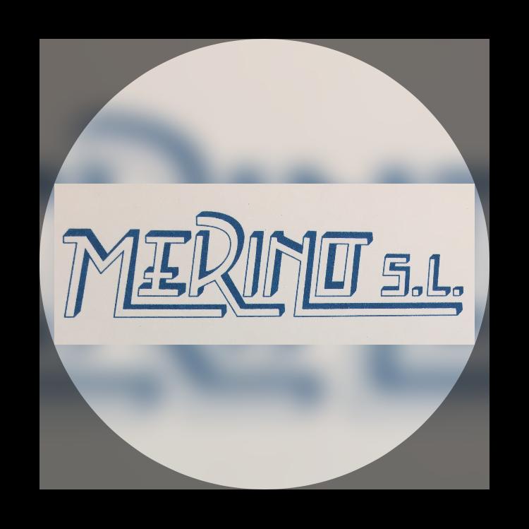 Merino Piscinas