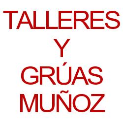 Talleres Y Grúas Muñoz