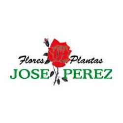 Flores Y Plantas José Pérez