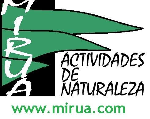 Mirua Actividades De Naturaleza