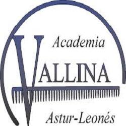 Academia de Peluquería Vallina