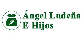 ÁNGEL LUDEÑA E HIJOS