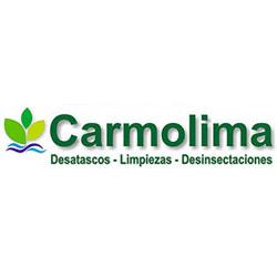 DESATASCOS Y LIMPIEZA DE ALCANTARILLADOS CARMOLIMA