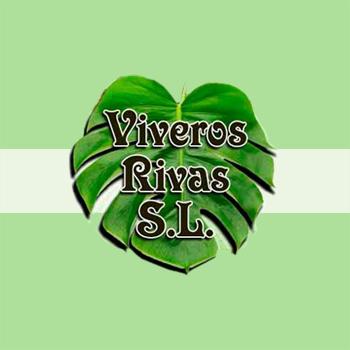 Viveros Rivas S.L.
