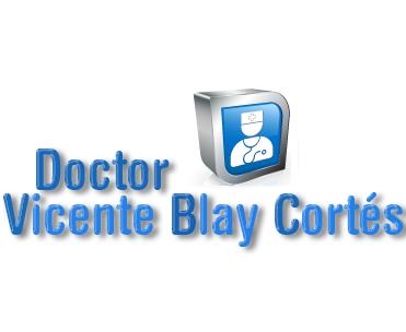 Vicente Blay Cortés