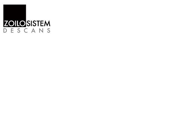 Zoilo Sistem Descans S.L.