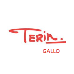 Terín Gsllo
