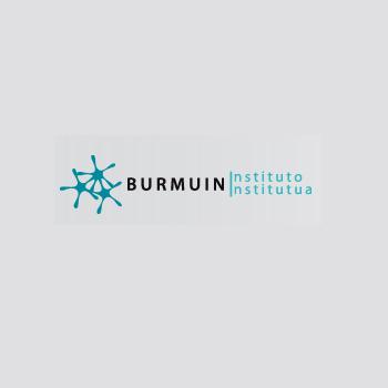 Instituto Burmuin