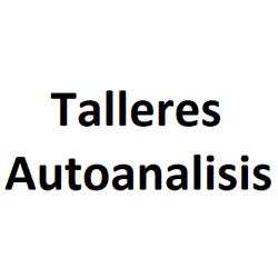 Talleres Autoanalisis