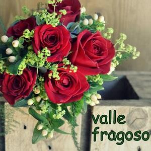 Floristería Valle Fragoso