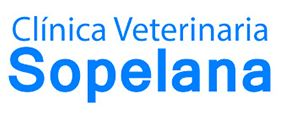 Clínica Veterinaria Sopelana