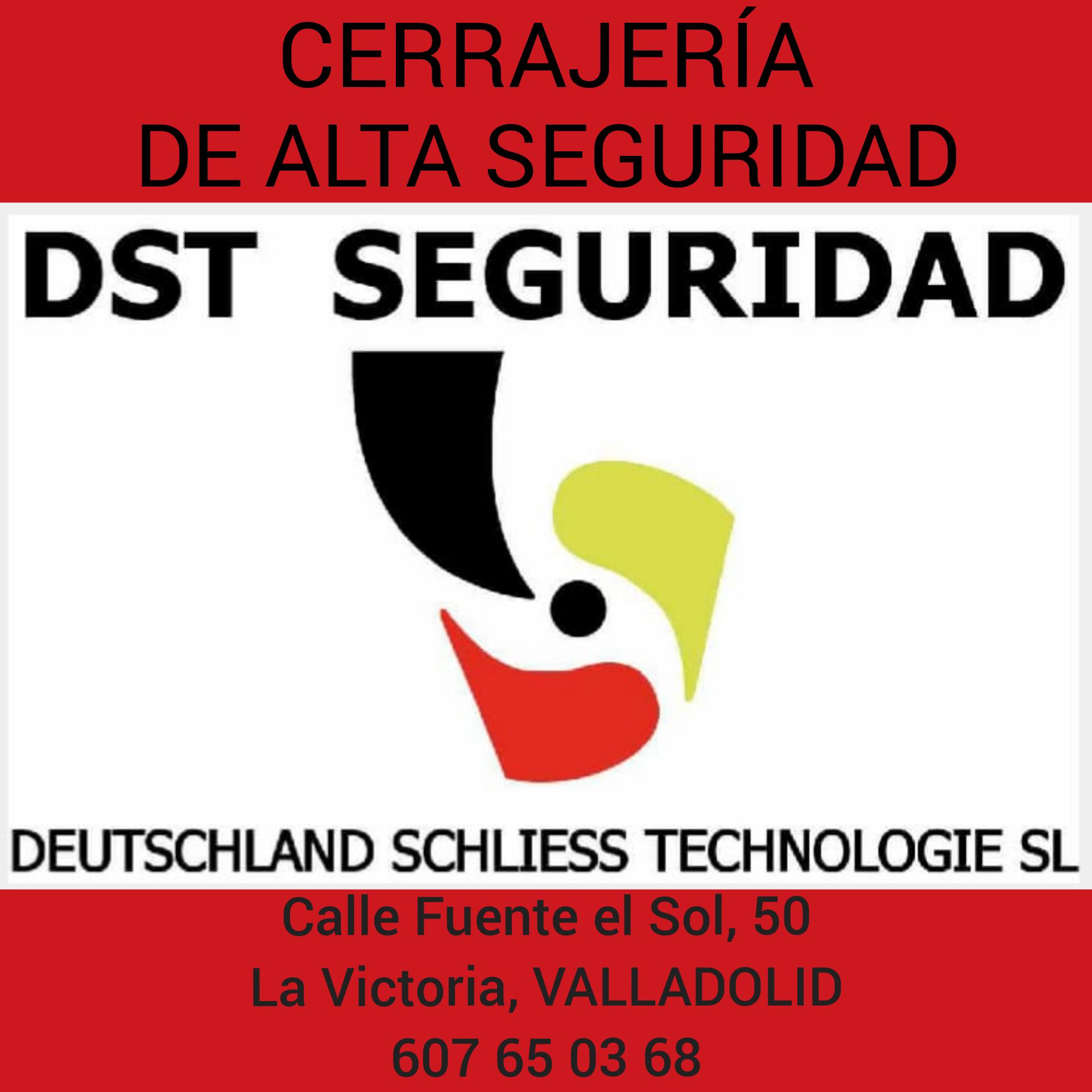 DST Seguridad