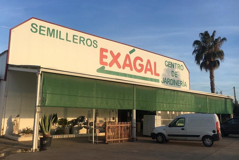 Exagal viveros centro de jardiner a don benito carretera miajadas 24 invernaderos - Centro de jardineria madrid ...
