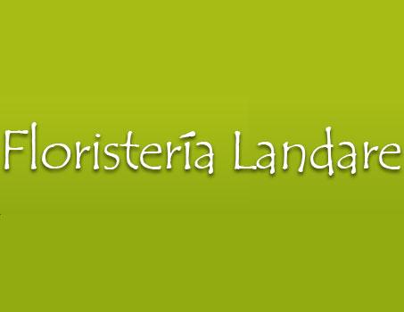 Floristería Landare