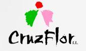Cruz Flor