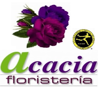Floristería Acacia Mérida - Florista Maribel
