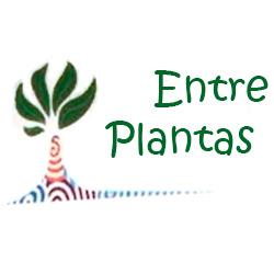 Entre Plantas