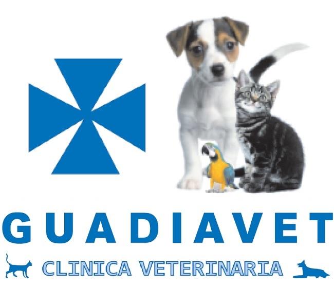 Guadiavet Clínica Veterinaria en Don Benito